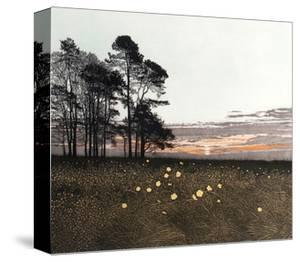 Celtic Poppies by Phil Greenwood