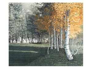 Dawn Gold by Phil Greenwood
