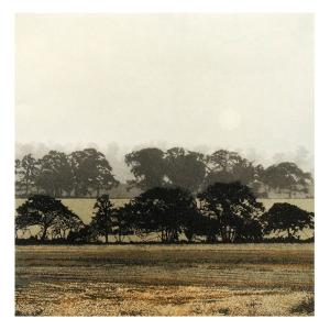 Dawn Mist by Phil Greenwood