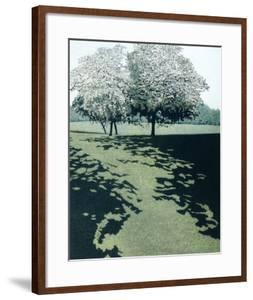 Dawn Shade by Phil Greenwood