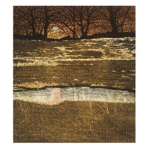 Fire Pool by Phil Greenwood