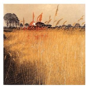 Fire Reeds by Phil Greenwood
