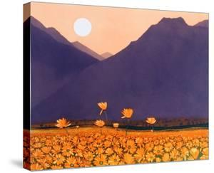 Marigold Mountain by Phil Greenwood