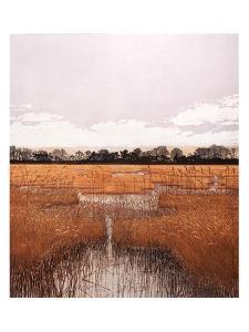 Marsh Waters by Phil Greenwood