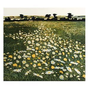 Moonpennies by Phil Greenwood