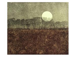 Morning Moon by Phil Greenwood