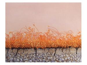 Pudding Stones by Phil Greenwood
