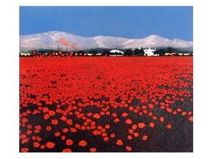 Red Haze by Phil Greenwood