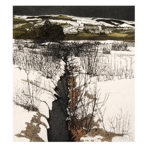 Snow Stream by Phil Greenwood