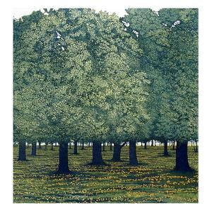 Summer Park by Phil Greenwood