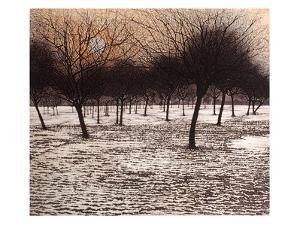 Thaw by Phil Greenwood