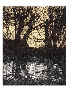 Tree Net by Phil Greenwood
