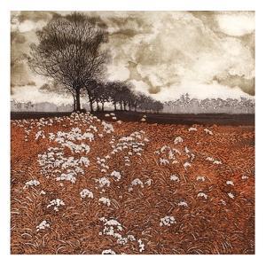 Tree Walk by Phil Greenwood