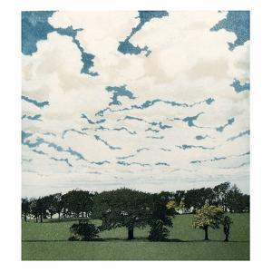 White Sky by Phil Greenwood