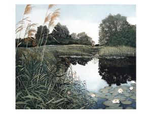 Wicken Fen by Phil Greenwood
