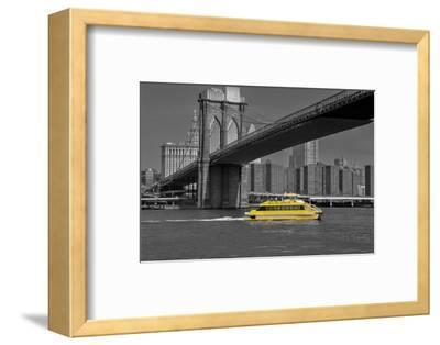 Ny Water Taxi under Brooklyn Bridge