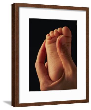 A Babys Toes