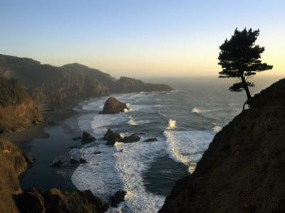A Scenic View of the Oregon Coast at Samuel H. Boardman State Park by Phil Schermeister