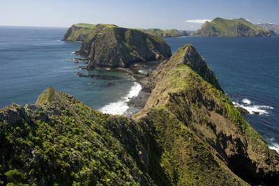 Inspiration Point on Anacapa Island in Channel Islands National Park by Phil Schermeister
