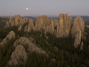 Needles Protrude from Forests in Custer State Park by Phil Schermeister