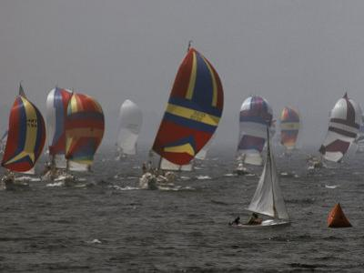 Spinnakered Boats Race in the Plattsburgh Mayor's Cup, Lake Champlain by Phil Schermeister