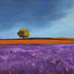Field of Lavender (Left Detail) by Philip Bloom