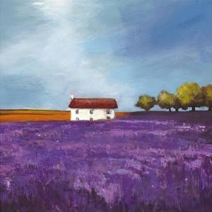 Field of Lavender (Right Detail) by Philip Bloom