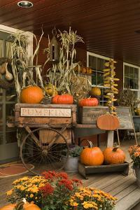 Autumn Harvest I by Philip Clayton-thompson