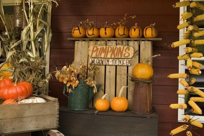 Autumn Harvest III by Philip Clayton-thompson