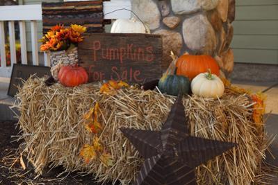 Autumn Harvest IV by Philip Clayton-thompson