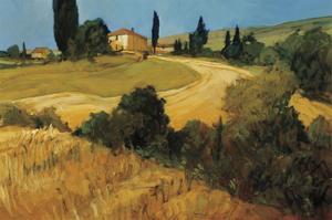 Bella Toscana by Philip Craig