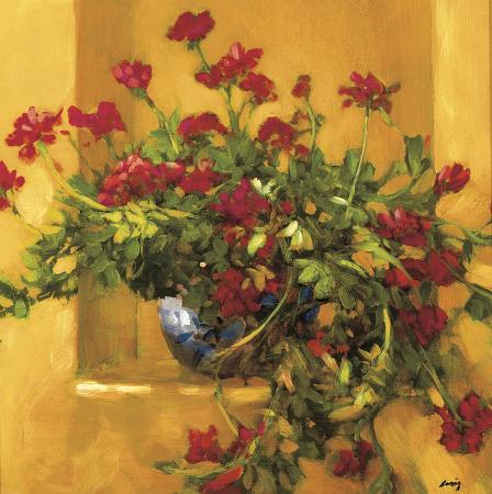 philip-craig-ivy-geraniums