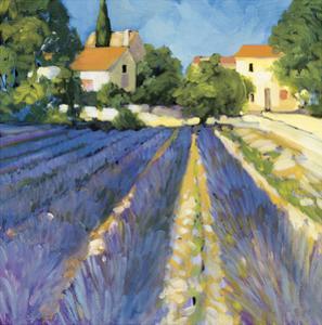 Lavender Fields by Philip Craig