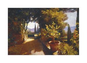 Lemon Tree Verona by Philip Craig