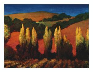 Poplar Trees Sonoma by Philip Craig
