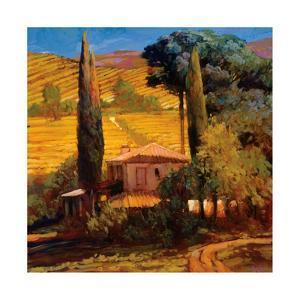 Tuscan Morning Light by Philip Craig