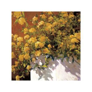 Yellow Geraniums by Philip Craig
