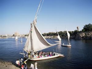 Feluccas on the River Nile, Aswan, Egypt, North Africa, Africa by Philip Craven