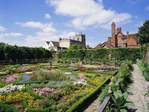 Nash House Gardens, Stratford-Upon-Avon, Warwickshire, England, UK, Europe by Philip Craven