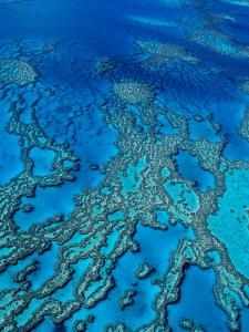 Aerial of Hardy Reef Offshore from Whitsundays Islands by Philip Game