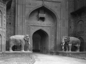 Elephant Statues at Red Fort by Philip Gendreau