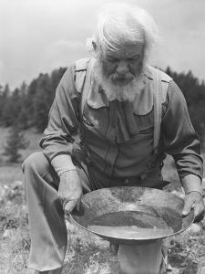 Old-Time Gold Prospector with Pan in Hands by Philip Gendreau