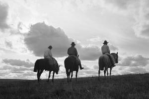 Three Men Riding the Range by Philip Gendreau