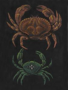 Crabs by Philip Henry Gosse