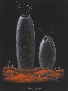Halichondria Sanguinea: Sponge by Philip Henry Gosse