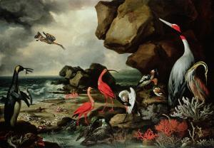 A Penguin, a Pair of Flamingoes, and Other Exotic Birds, Shells, and Coral on the Shoreline by Philip Reinagle