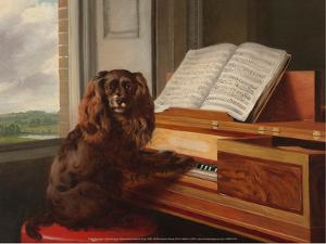 Portrait of an Extraordinary Musical Dog, 1805 by Philip Reinagle