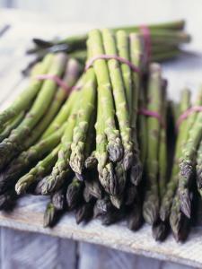Green Asparagus by Philip Webb