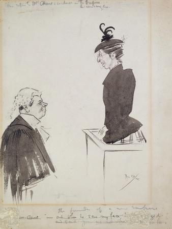 The Witness (Mrs Chant), 1894
