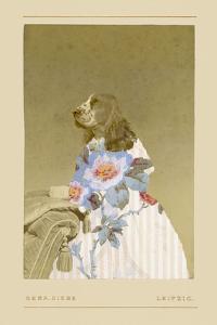 Constance by Philippe Debongnie